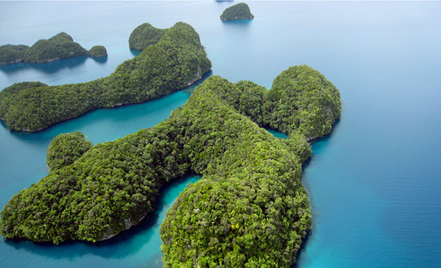 The incredible island formations of Palau